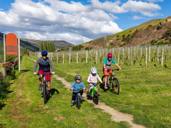 Family bike riding through the wineries of queenstown